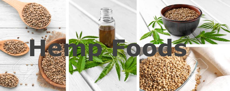 What is Hemp Food?